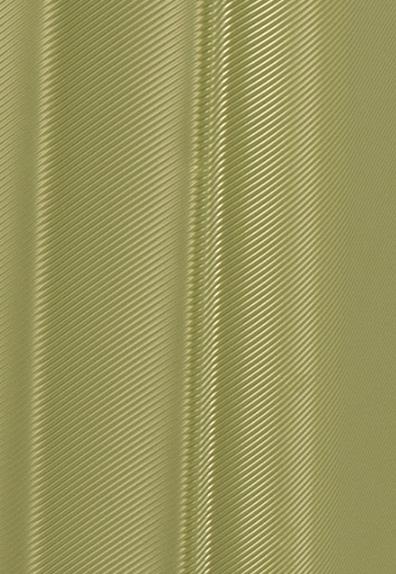 maleta-zebra-de-gladiator_material